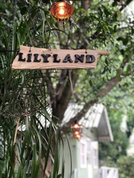 Lilyland