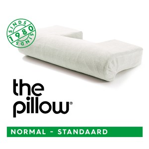 The Pillow Normal standaard met sloop