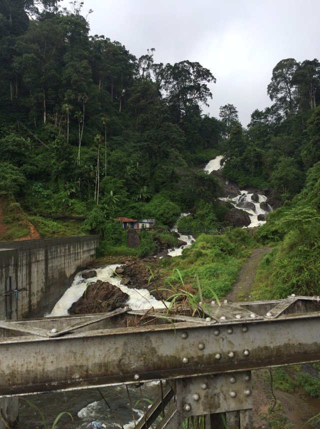 There are several waterfalls on the way from Munnar to Allepey. This is one near Devikulam.