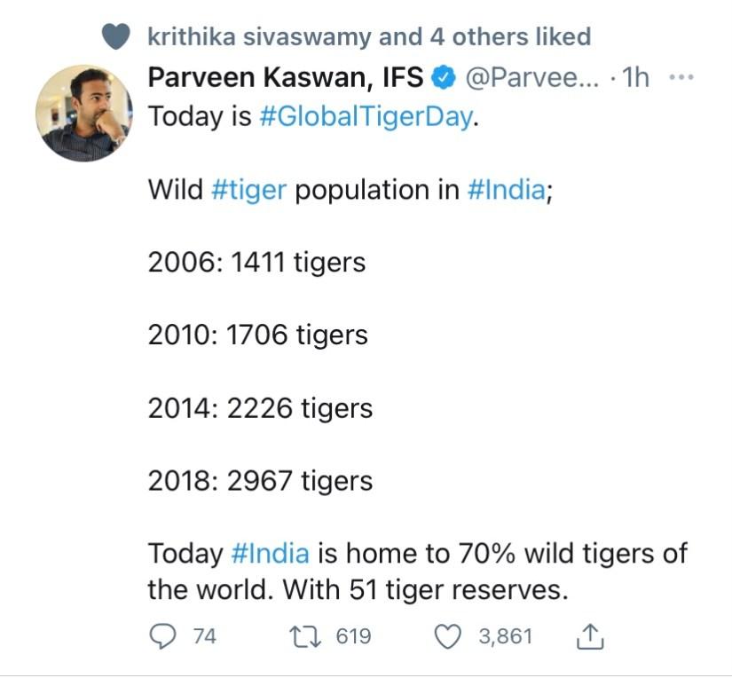 Tiger Day - July 29