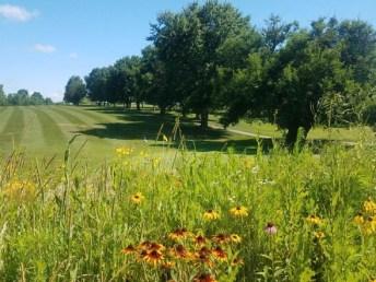 cameron-golf-course-july-11-2019-9_crop