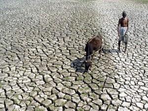 famine crop failure dry