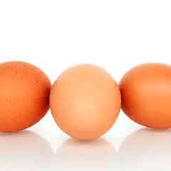 94 imagen huevos
