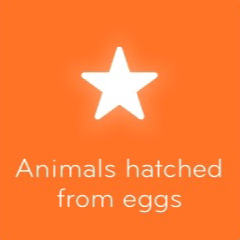 Animals hatched from eggs 94