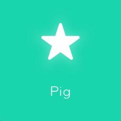 Pig 94
