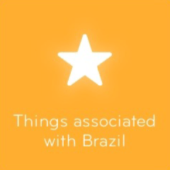 Things associated with Brazil 94