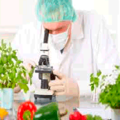 94 microscope picture answers