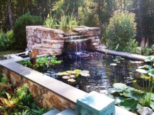 Totally Inspiring Backyard Waterfall Ideas On A Budget 29