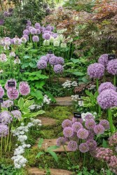 Inspiring Planting Combination Ideas For Your Garden 34
