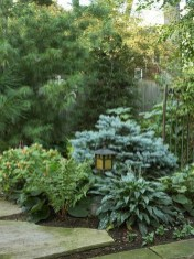 Absolutely Difference Small Backyard Landscaping Ideas 18