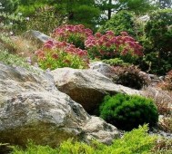 Pretty Front Yard Rock Garden And Landscaping Ideas23
