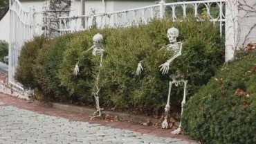 Unique Crafty Diy Outdoor Halloween Decorating Ideas19