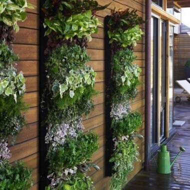 Stylish Vertical Garden Ideas For House10