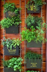 Stylish Vertical Garden Ideas For House15