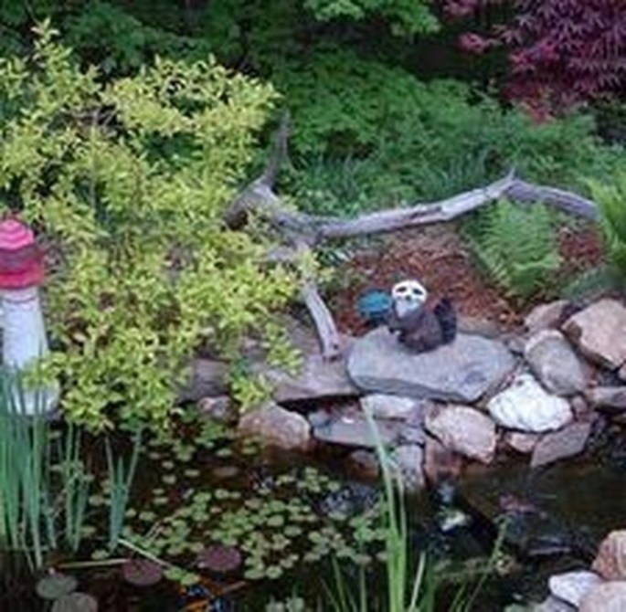 Gorgeous Landscaping Design Ideas For Beginners 32