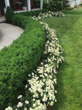 Unusual Front Yard Landscaping Design Ideas That Looks Great 29