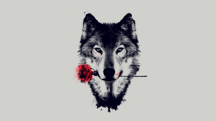 ✅[185+] Cool wolf Android iPhone Desktop HD Backgrounds / Wallpapers 1080p 4k 1920x1080 2020