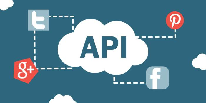 What is an API and Why is it Useful?