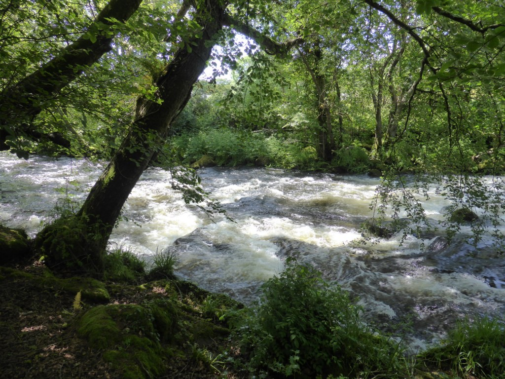 river in full spate