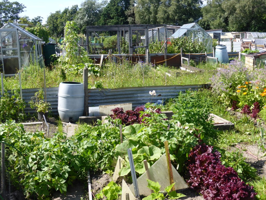 allotment view
