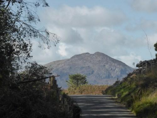 Moel-ddu skyline above the lane