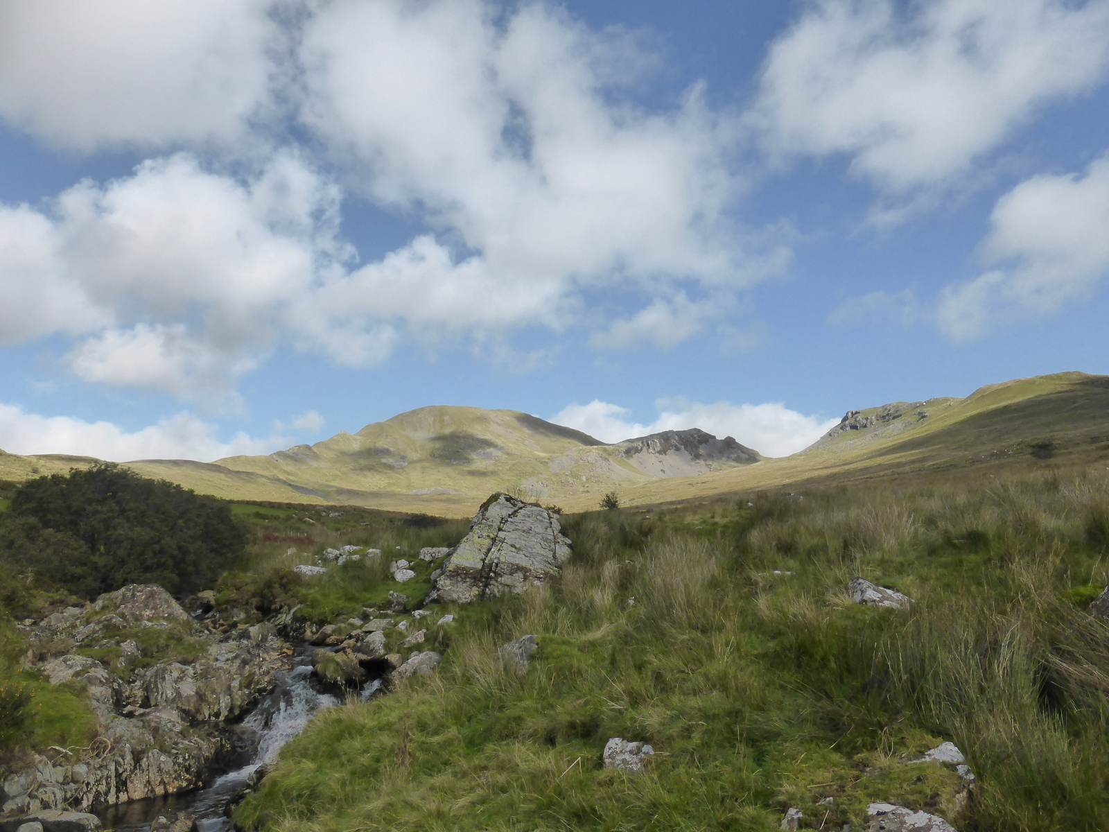 Moelwyn skyline above stream