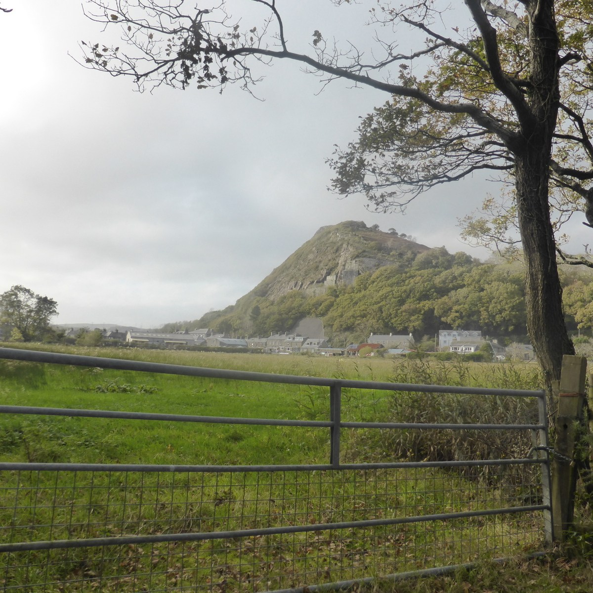 cliff above fieldgate