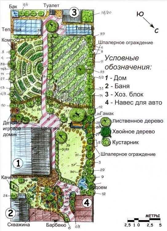 Что посадить в саду схемы. Разбиваем участок и планируем посадки относительно солнца