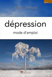9editions-livre-cedric-larose-depression-002