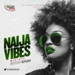 Mixtape: DJ Flexy - Naija Vibes Mix