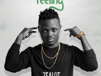 MP3: Zealot - Feeling