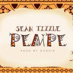 Music: Sean Tizzle - Pempe