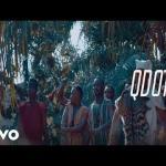 (video) Qdot - Aare