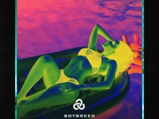 MP3 : Boybreed - Swimming Pool (Prod. BadBoySwag)