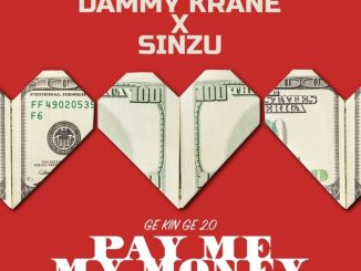 MP3: Dammy Krane Ft. Sinzu - Pay Me My Money (Remix 2.0)