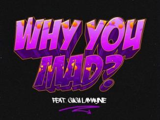 DJ Zan D ft. Gigi Lamayne - Why You Mad