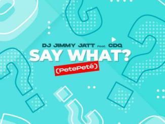 DJ Jimmy Jatt ft. CDQ - Say What? (PetePeté)