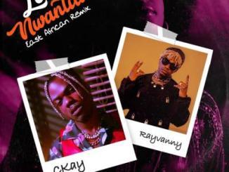 CKay ft. Rayvanny - Love Nwantiti (East African Remix)