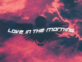 Thutmose ft. Rema, R3hab - Love In The Morning (Remix)