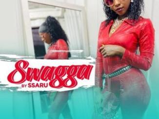 Ssaru - Swagger