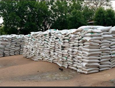 Despite Hunger In Kano, State Abandons Govt's COVID-19 Palliatives Under Sun, Rain 1