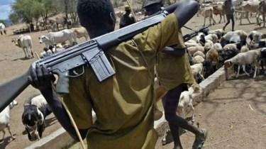 Many Killed As Suspected Herdsmen Attack Ebonyi Community