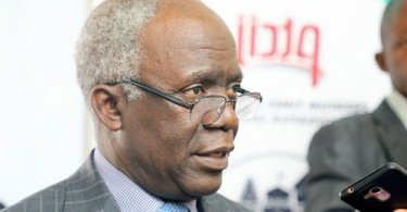 FG Should Have Sued Twitter, Not Place A Ban – Falana