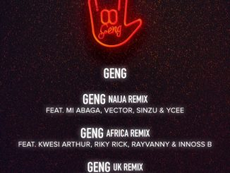 Download Mp3: Mayorkun - Geng Naija Remix Ft. M.I Abaga, Vector, Sinzu and Ycee