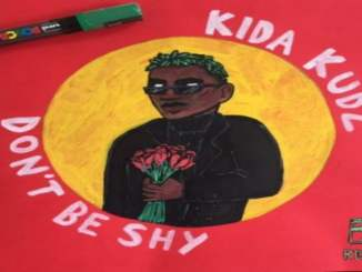 Download: Kida Kudz - Don't Be Shy
