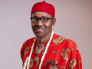 Ohaneze Ndigbo Youth Council petitions UK and US over President Buhari's tweet about civil war