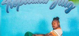 Stilo Magolide – Combo ft. Riky Rick, OkMalumKoolKat, Mashayabuqe & uSanele