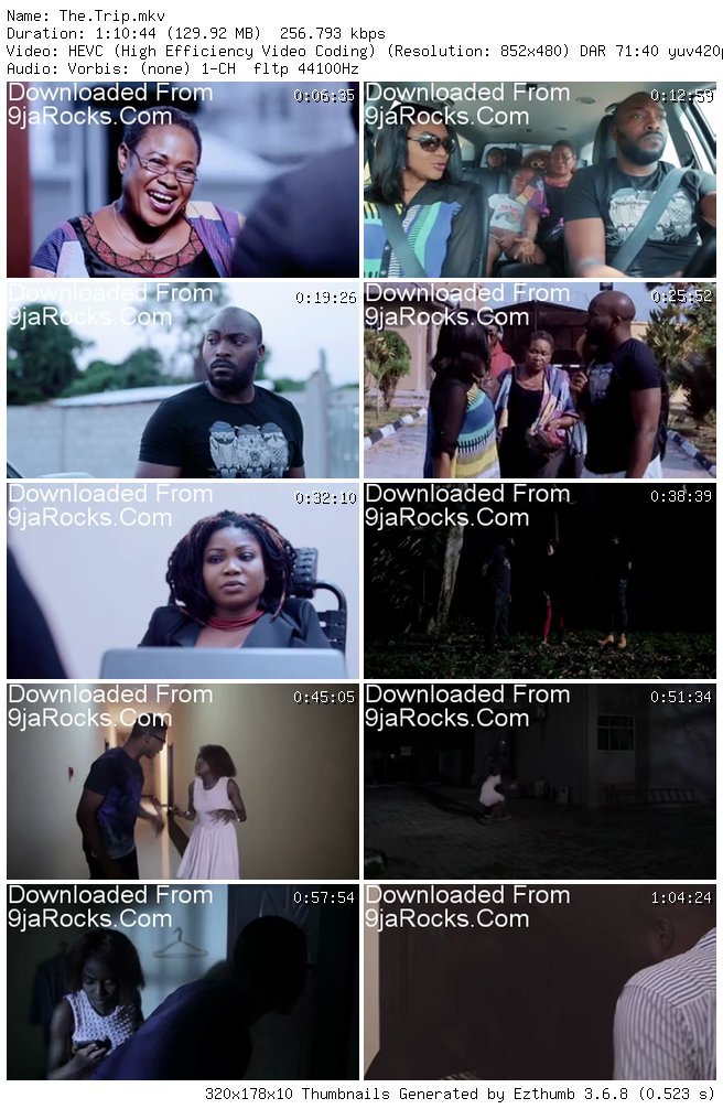 Download The Trip Nollywood Movie (2019) 5