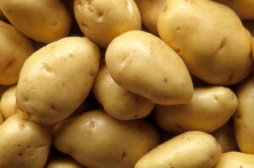 English Potatoe - types of potatoes