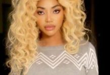 alt-Dencia-net-worth-and-biography-img